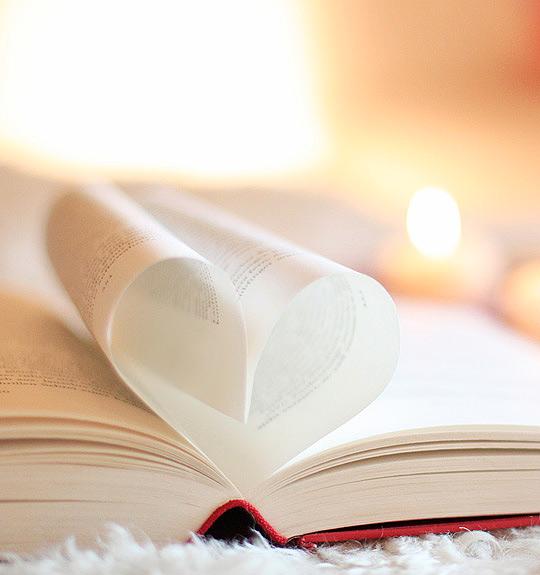 Bücher und Publikationen